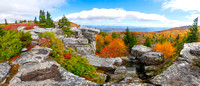 DOLLY SODS | WEST VIRGINIA