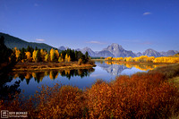 OXBOW BEND MIDNIGHT LIGHT
